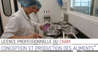 licence pro conception aliments(340)