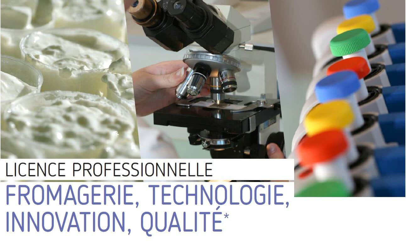 licence pro fromage technologie innovation qualite