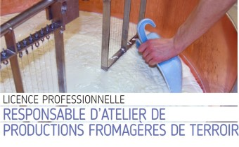 licence pro fromages comte