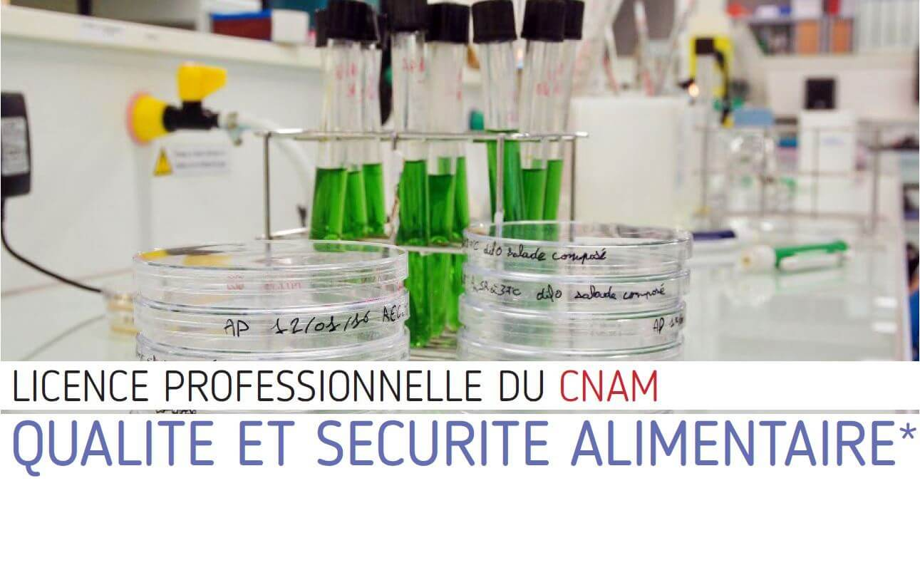 licence pro qualite securite alimentaire